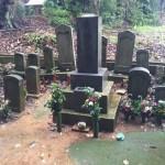 豊橋市 地域墓地にて