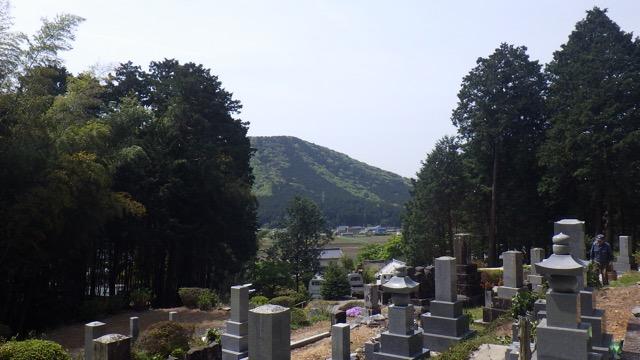 image4 (02D)