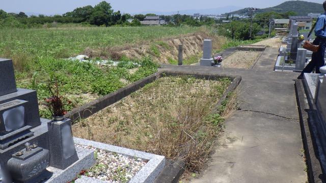 image1 (08D)